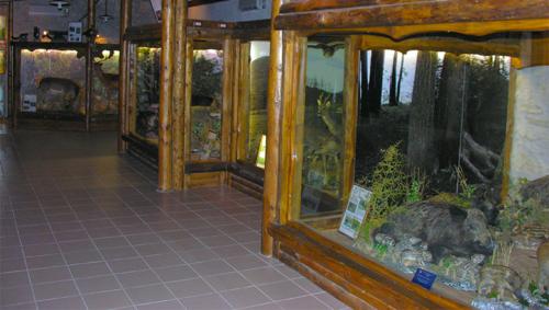 Museo Naturalistico Riserva Montedimezzo